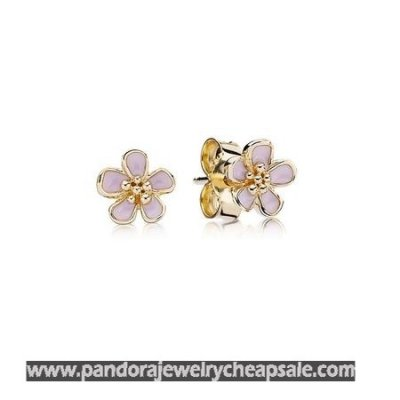 Pandora Collections Cherry Blossom Pink Enamel Stud Earrings 14K Gold Cheap Sale